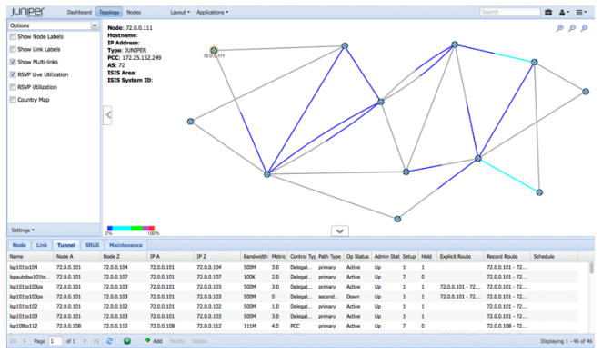 Figure 2. NorthStar live network visualization